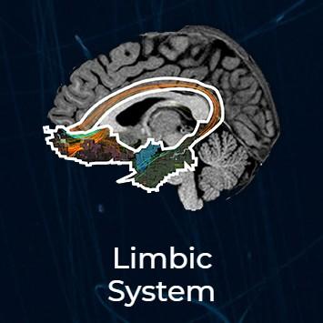 limbic thumbnail