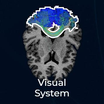 visual thumbnail